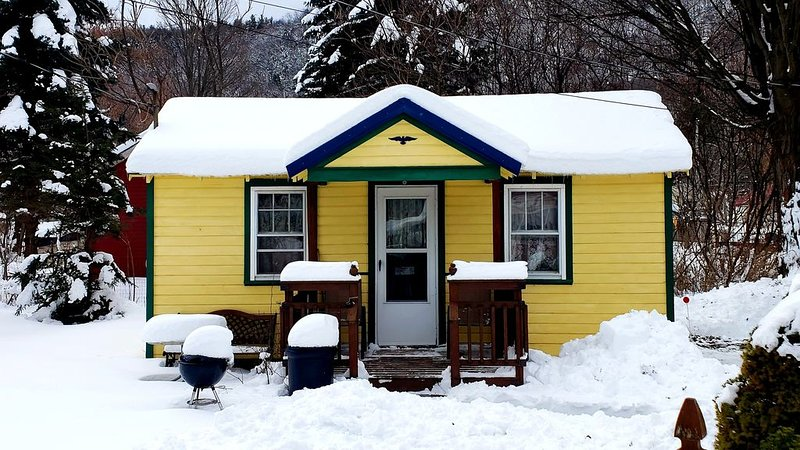 Catskill Bungalow - Tiny House Vacation for couples, Windham & Hunter NY, skiing, holiday rental in Stamford