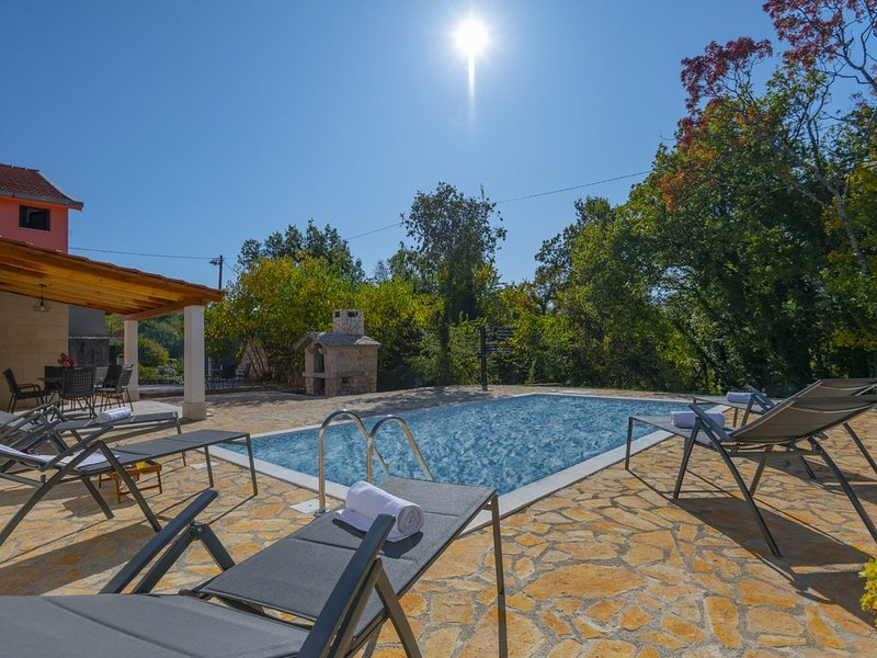 Villa Milla, completely decorated with the private pool, vacation rental in Donji Prolozac