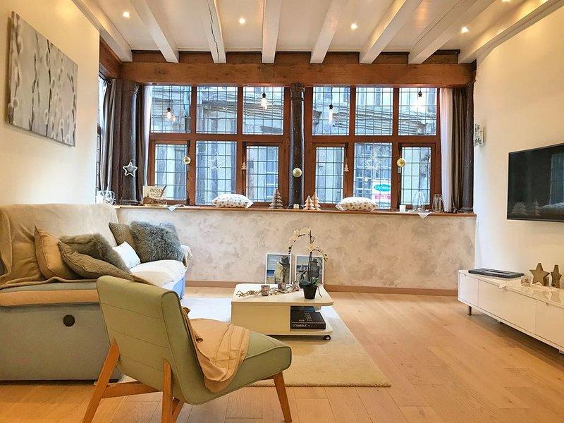 Superbe appartement de charme classé 4 étoiles au cœur historique de Dinan, holiday rental in Dinan