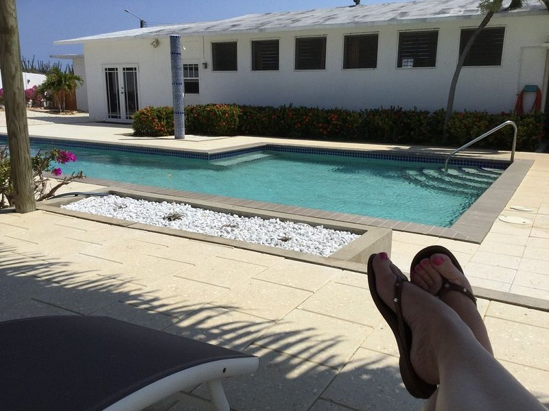 Mid- Century Modern House with Pool close to Baby Beach, vacation rental in San Nicolas