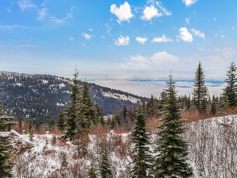 Updated dog-friendly condo w/lake view - close to Schweitzer Mountain!, holiday rental in Colburn