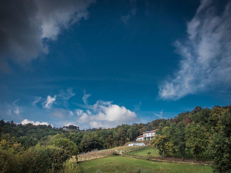 La collina az. agricola - Superga - Baldissero -  15km dal centro di Torino, alquiler vacacional en Sciolze