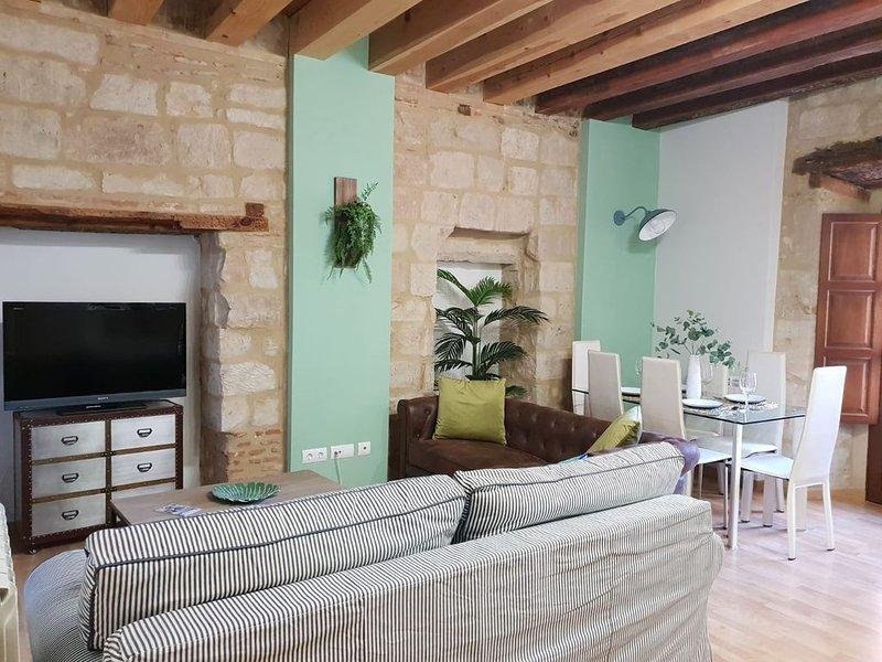 APARTAMENTO ESTILOSO PLENO CENTRO EN UN EDIFICIO DEL SIGLO XVIII, holiday rental in Roscales de la Pena