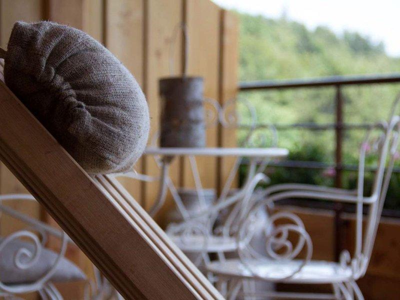 Gîtes & Spa en Alsace Gîte Bagenelles 2 personnes, holiday rental in Aubure