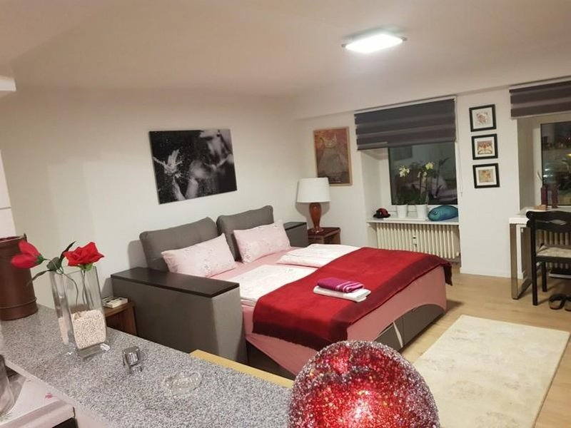 Komfortable Ferienapartment  Saarbrücken City, location de vacances à La Sarre