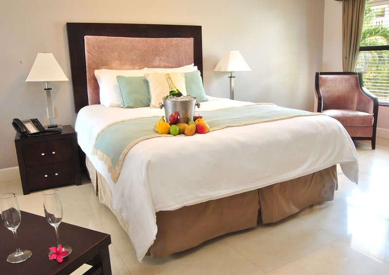 The Alexander - #201 2 Bedroom Suite, alquiler vacacional en South Town