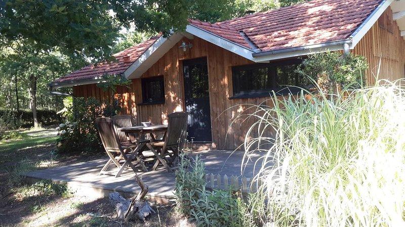 La maison de Maryse, holiday rental in Lege-Cap-Ferret