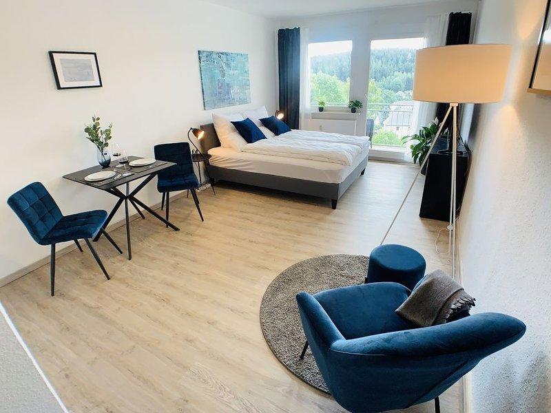 Gemütliches Apartment in Bad Elster mit Netflix, vacation rental in Oberkotzau