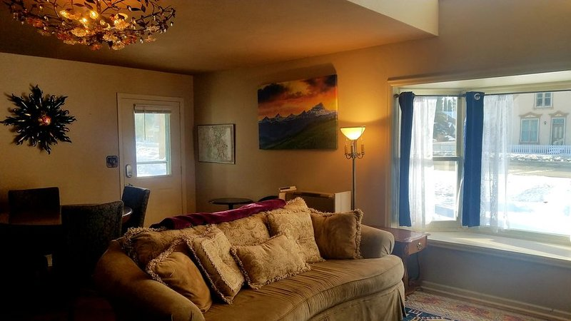 The Gowdy Apartment. private fenced yard pet friendly , modern, clean, fun!, holiday rental in Lake City