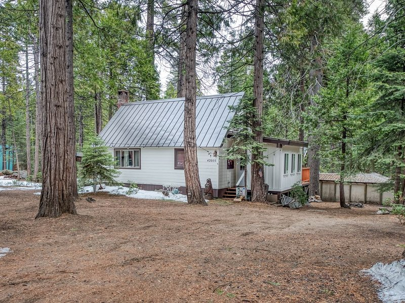 Dog-friendly cabin in forested setting w/ large deck - walk to village!, alquiler de vacaciones en Shaver Lake