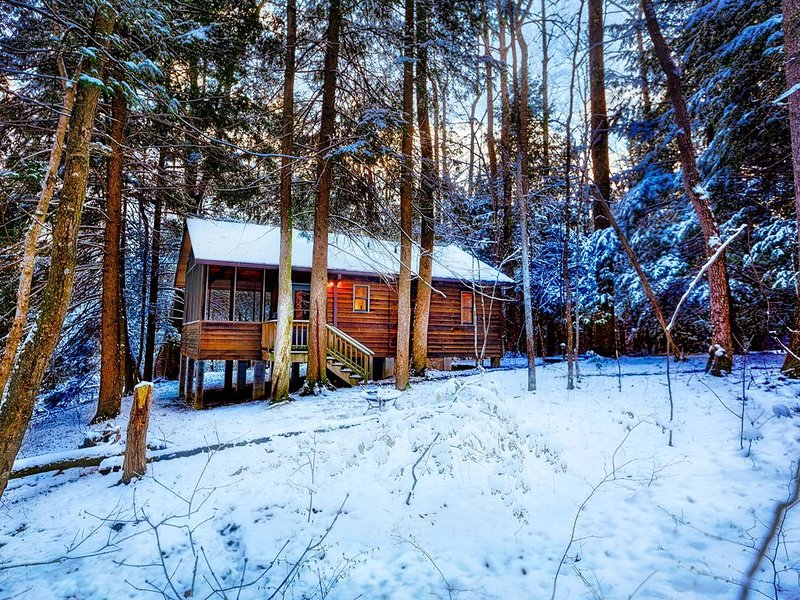 Romantic Cabin 1 with Hot Tub on Screened porch next to National Park, holiday rental in Summersville