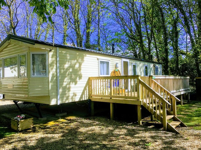 Quiet woodland retreat, extensive decking, within 2 miles of 3 pristine beaches, location de vacances à Wadebridge