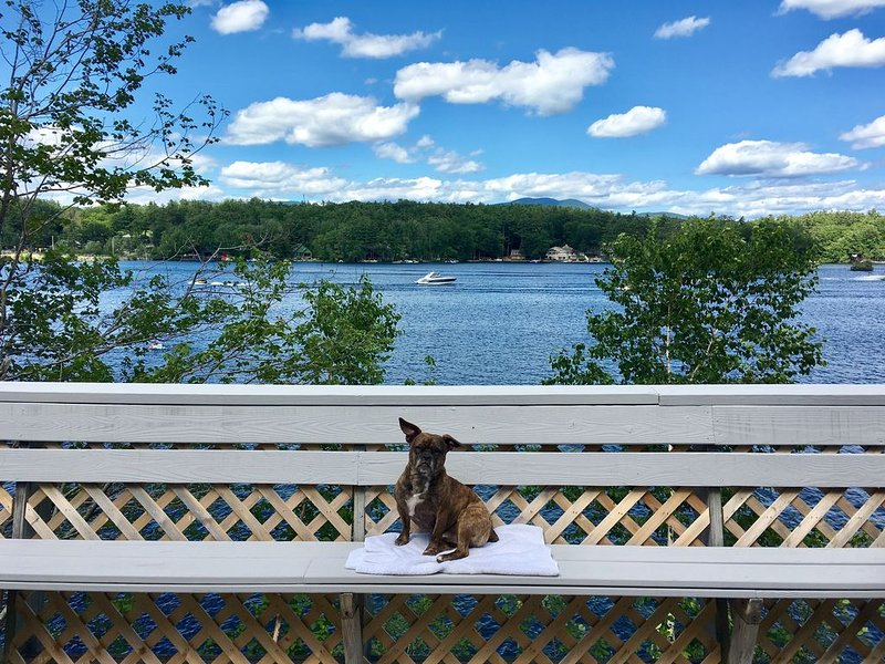 Waterfront House on Winnipesaukee w Private Dock | Sleeps 11 & Dogs Welcome!, holiday rental in Melvin Village