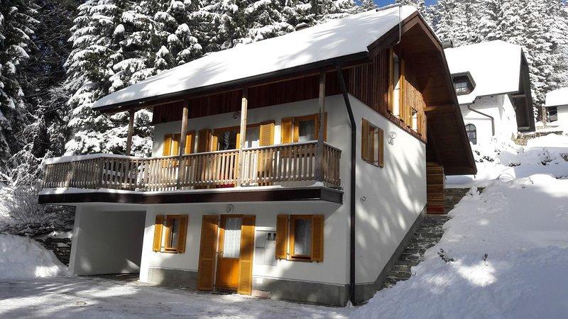 Chalet Harmony Rogla - duplex apartment, vacation rental in Oberhaag