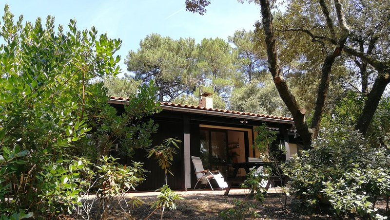 Maison dans les pins à 300 m du lac et à 5 km de l'océan, holiday rental in Gironde