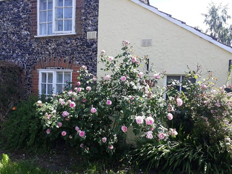 250 year old traditional flint cottage Suffolk, holiday rental in Hockwold cum Wilton