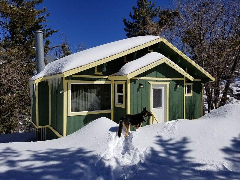 Serene Charming Cabin in Arrowbear, holiday rental in Calimesa