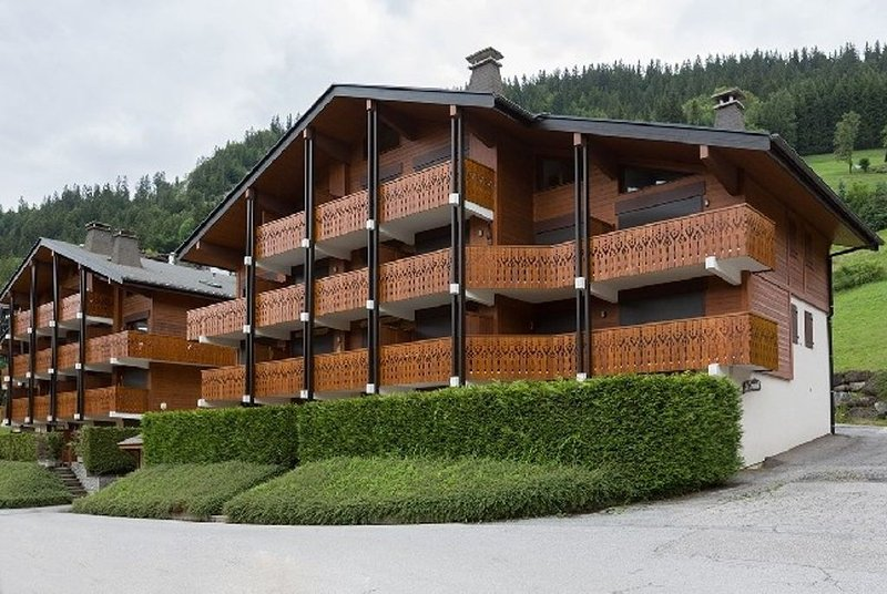 LA CLUSAZ - Résidence DOMANIAL B - 2 pièces avec cave et garage / 4 à 6 pers, holiday rental in La Clusaz
