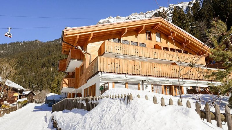 Grathoren - Waldbort (car limited village), holiday rental in Jungfrau Region