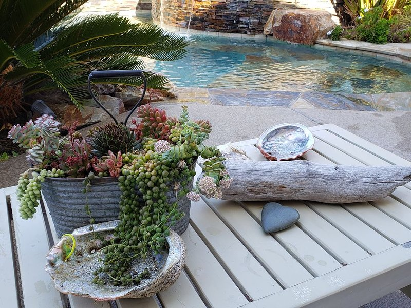 Outdoor living Pool/Spa/fire pit/ BBQ, location de vacances à Encinitas