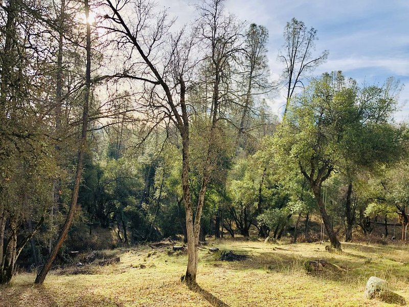 Wooded Oasis in the Sierra Nevada Foothills, holiday rental in Jamestown