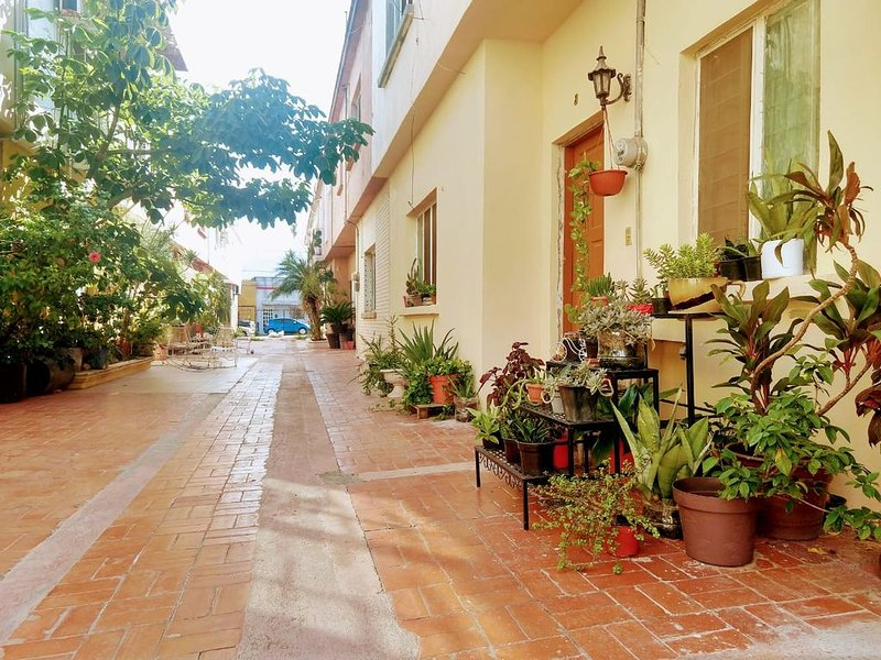 Vintage House for 5 people in the heart of Monterrey, holiday rental in Monterrey