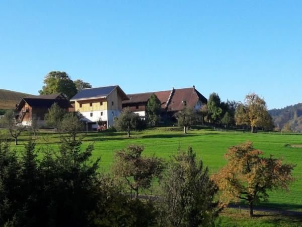 Apartment Burgdorf for 1 - 6 people with 3 bedrooms - farmhouse – semesterbostad i Bigenthal
