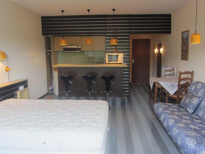 Studio meublé pleine nature, 4 couchages, 33m², 1h de Strasbourg, holiday rental in Badonviller