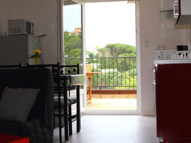 bel appartement moderne et confortable avec terrasse, location de vacances à Lamalou-les-Bains