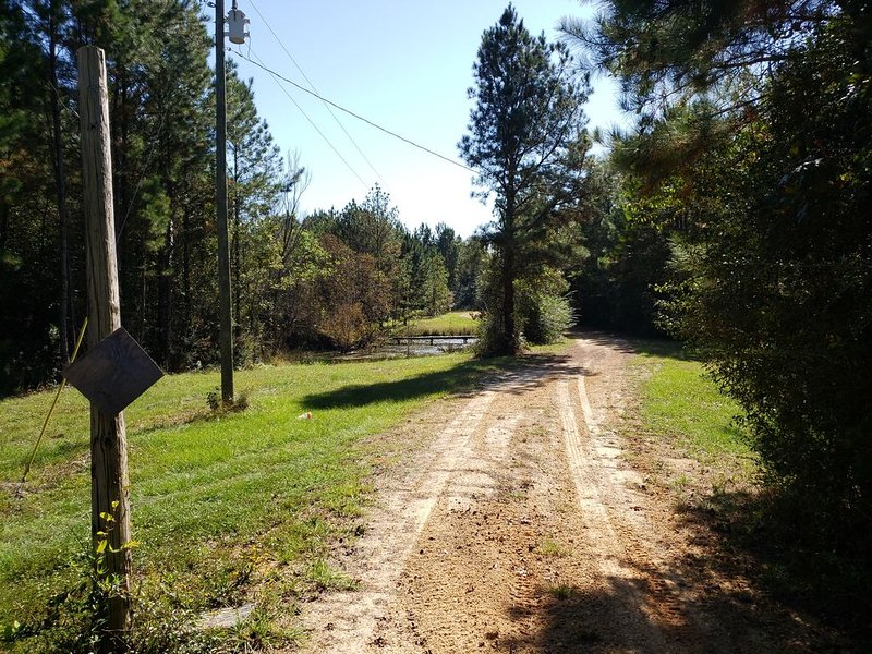 Cozy waterfront cabin on 20 acres, holiday rental in Wiggins
