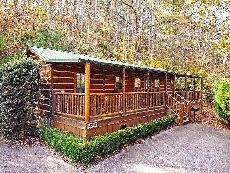 Moose Cabin - Big Bear Cabin Rentals 2 Bedroom/1 Bath Vacation Rental, holiday rental in McDonald