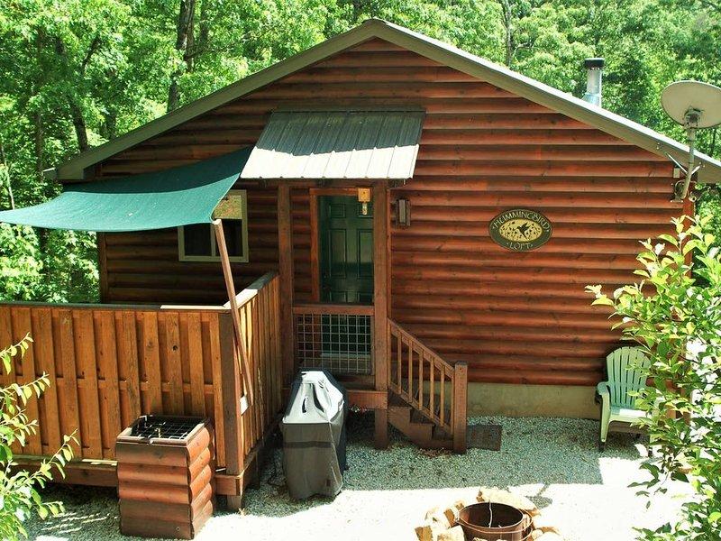 Romantic Couple's Mountain Getaway!, location de vacances à Parc national des Great Smoky Mountains
