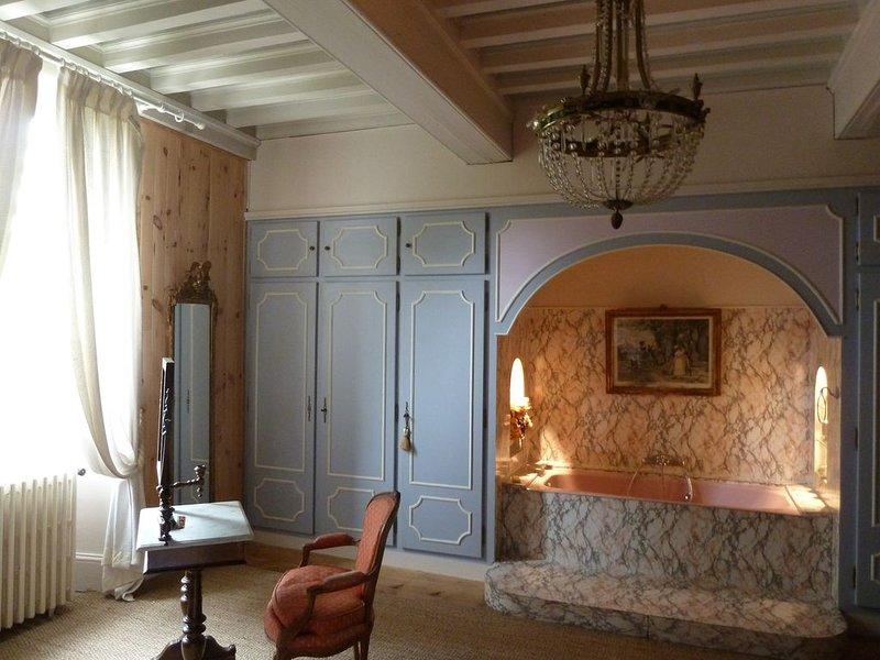 Château avec personnel, offre demi-pension, proche Vallée de La Loire et Beauval, casa vacanza a Nouan-le-Fuzelier
