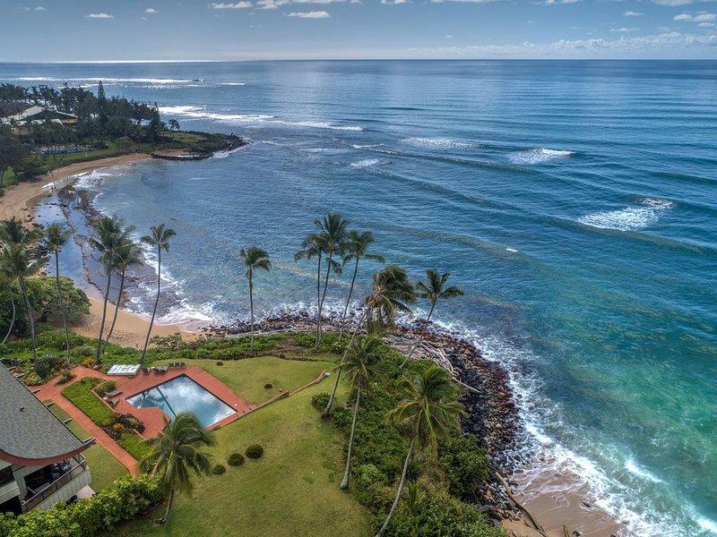 Paradise Found at Hale Awapuhi!, vacation rental in Kapaa