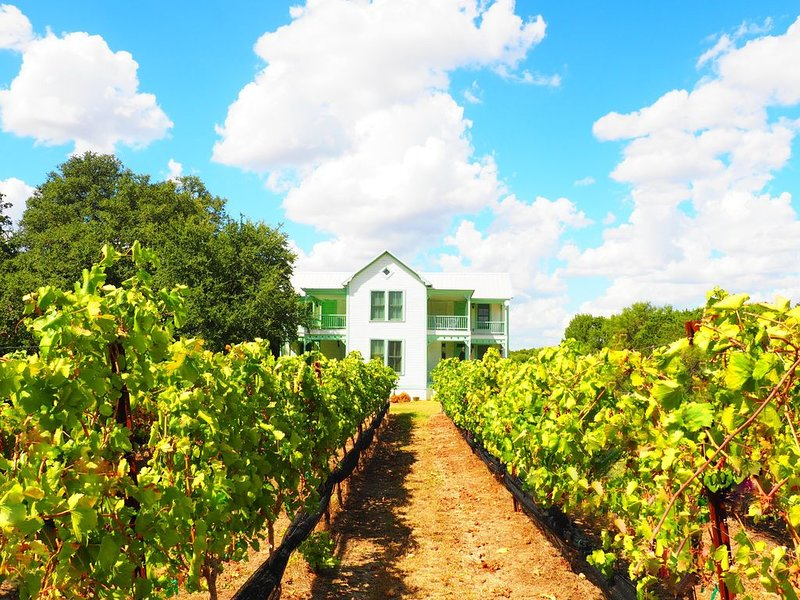 Two story home with vineyard view., holiday rental in Hye