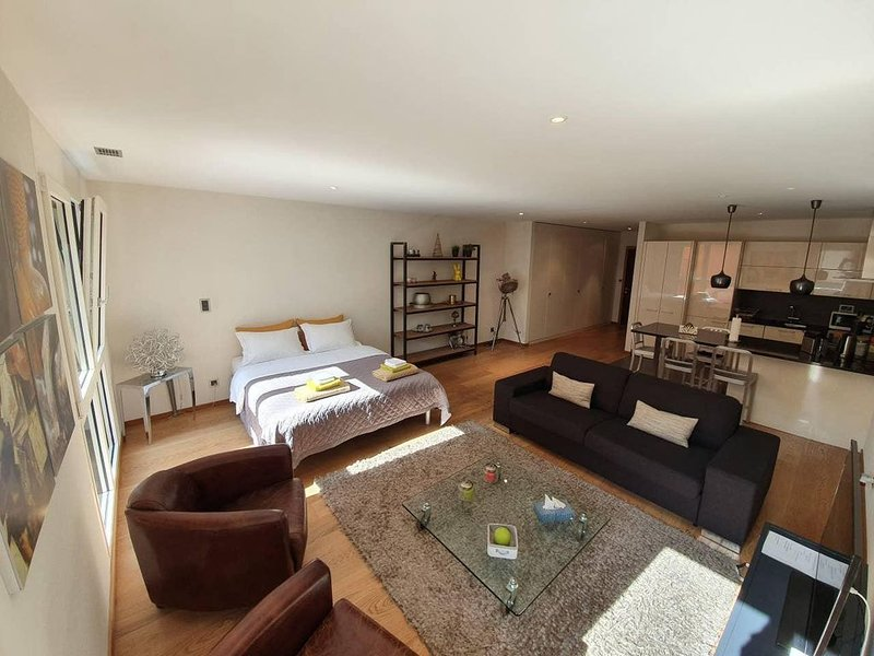 Montreux Home Sweet Home, 5 * Star Studio Loft, holiday rental in Montreux