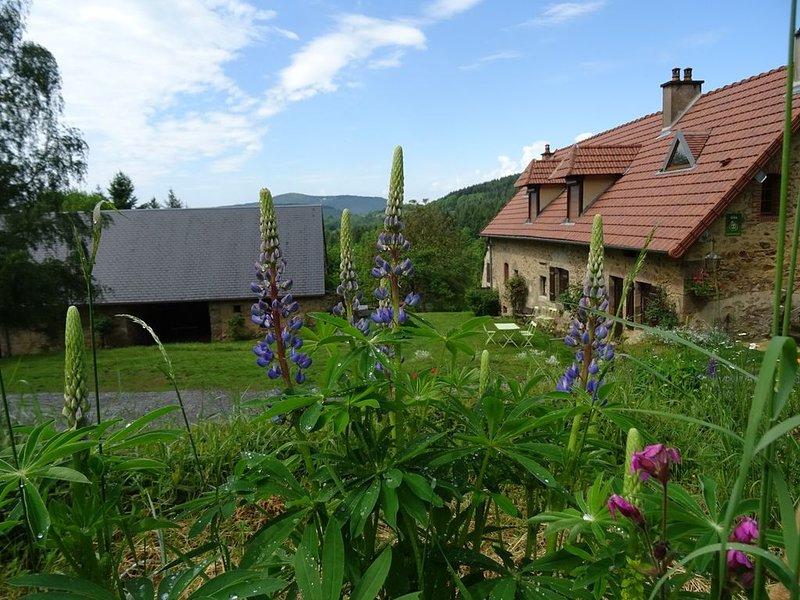 Gîte rural Boisseau, 6 pers. calme et spacieux avec vue panoramique, holiday rental in Lucenay-l'Eveque