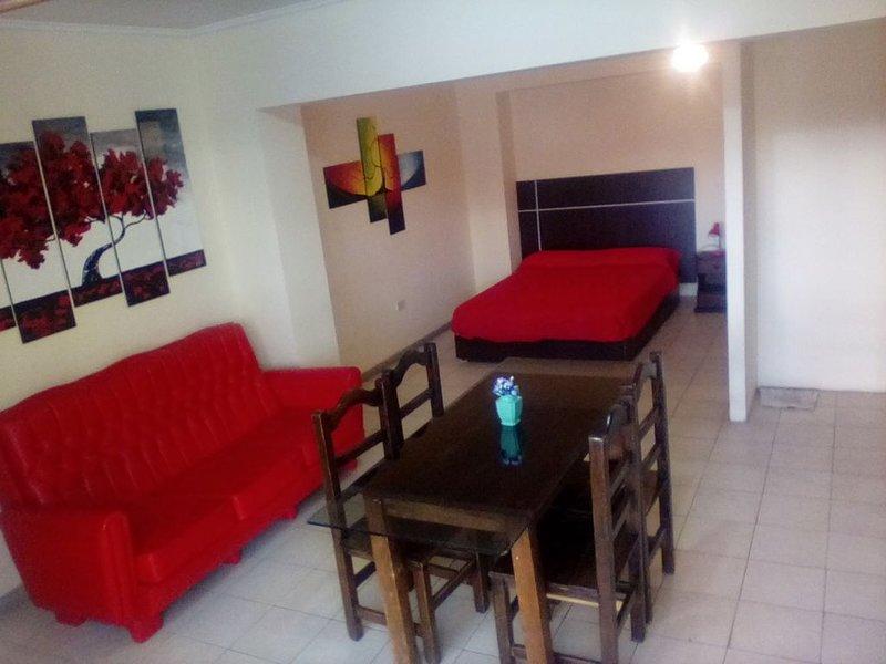 Alto Godoy Apart (Monoambiente amlio, totalmente equipado), holiday rental in Villa Nueva