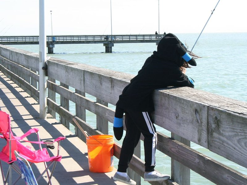 Beach Condo Walk to the sand beach and Texas State Aquarium., holiday rental in Robstown