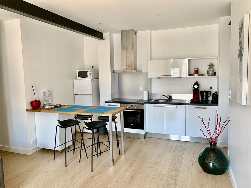 Appartement  RIVE DROITE, holiday rental in Saint-Ave