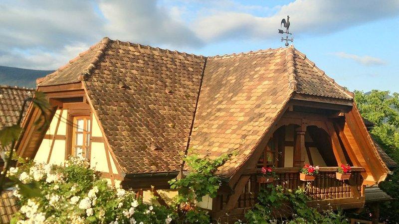 Très belle maison alsacienne  de caractère, holiday rental in Fouchy
