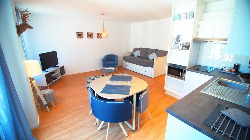 APPARTEMENT RIVE  GAUCHE, holiday rental in Saint-Ave
