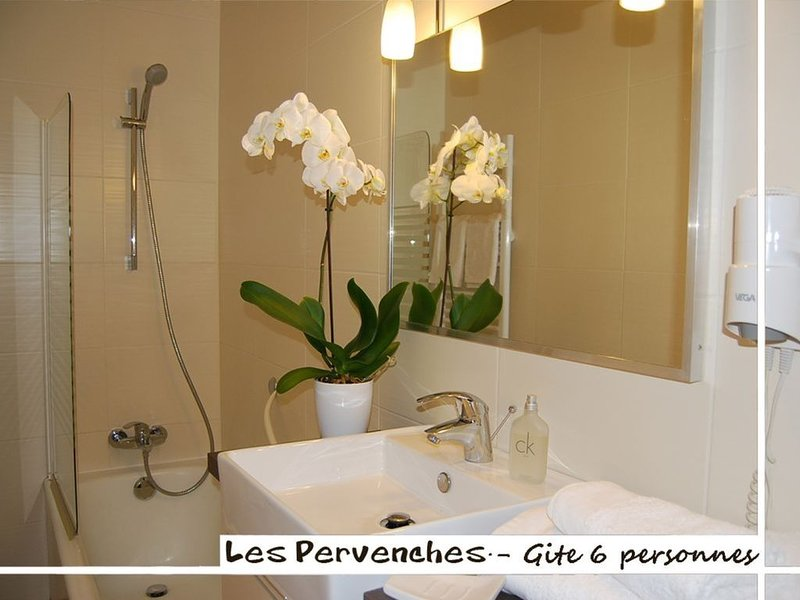 Gite les Pervenches 6 personnes au coeur des Aravis, vacation rental in Les Villards-sur-Thones