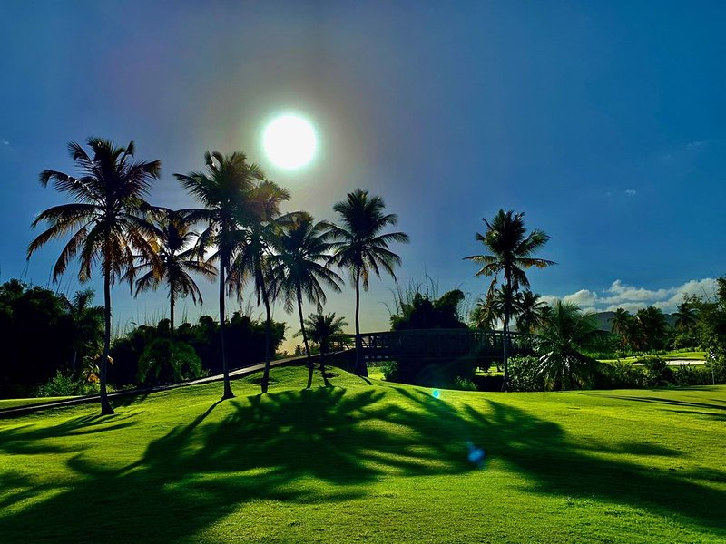 Beautiful Villa Overlooking 9th Hole of the Ocean Course, holiday rental in El Yunque National Forest