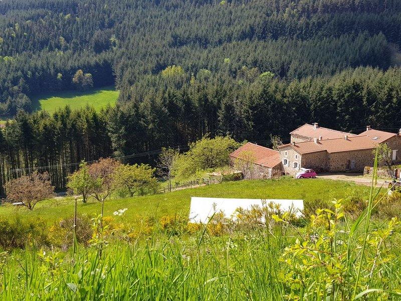 Maison 10 personnes en Ardèche avec piscine chauffée, holiday rental in Annonay