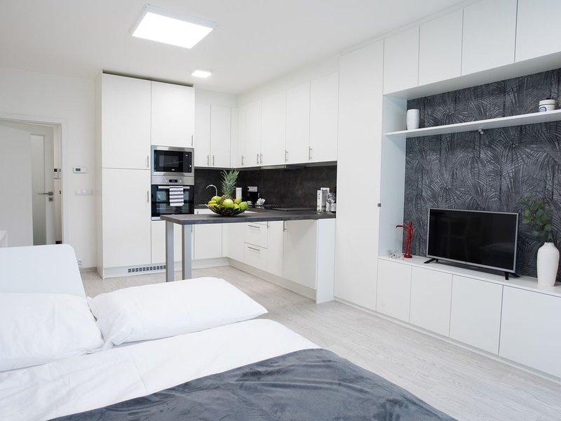 Brand-new spacious studios in the hip 'Karlin' quarter, location de vacances à Radonice