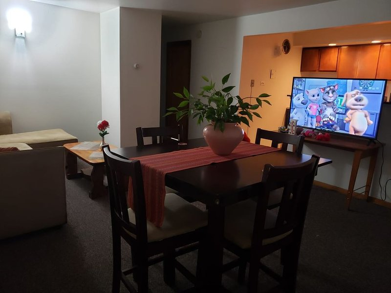 Two bed room Apartment, holiday rental in Homer Glen