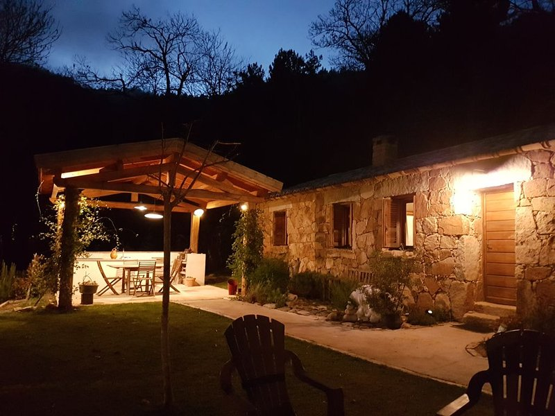 greenery in the chestnut grove., holiday rental in Olivese