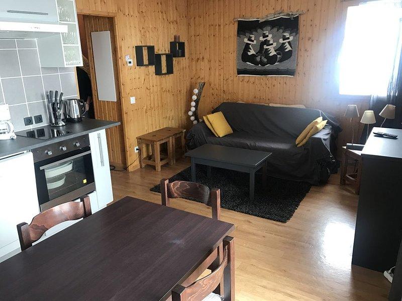 Appartement cocooning à la montagne dans un chalet au coeur d'un village., holiday rental in Saint Jean d'Arves