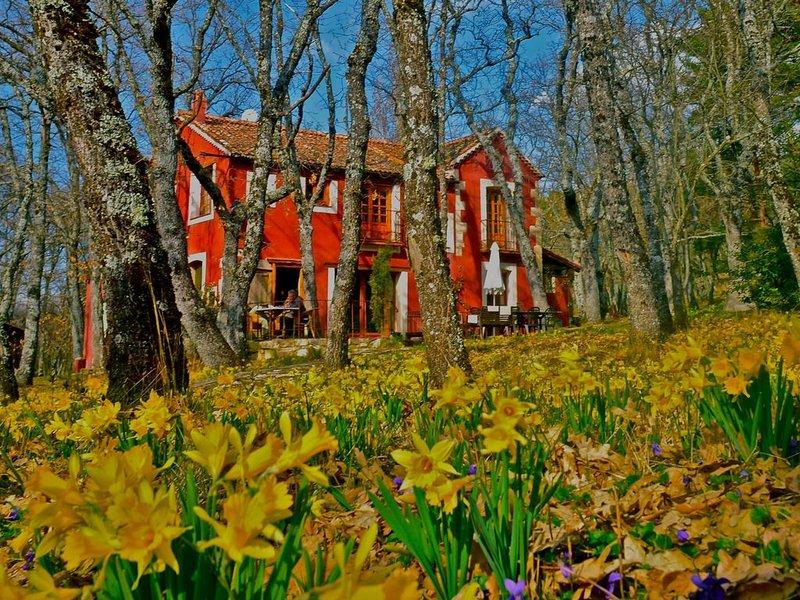 Una casa mágica en el corazón del parque de Guadarrama, aluguéis de temporada em Adrada de Piron